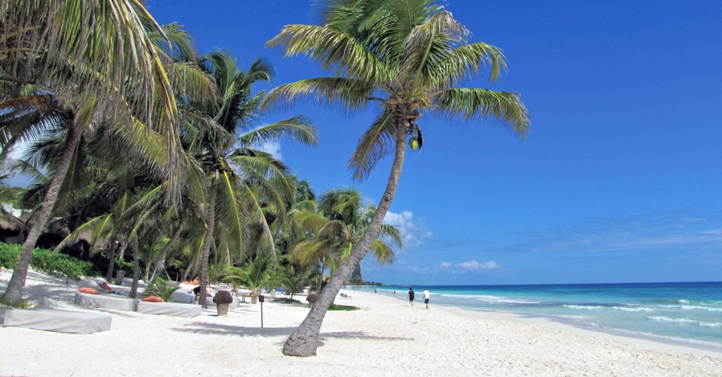 white sand beach with palm trees in Tulum