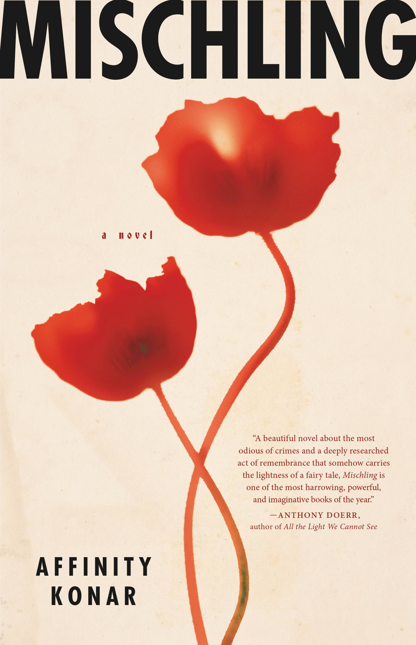 Mischling Hachette Book Group