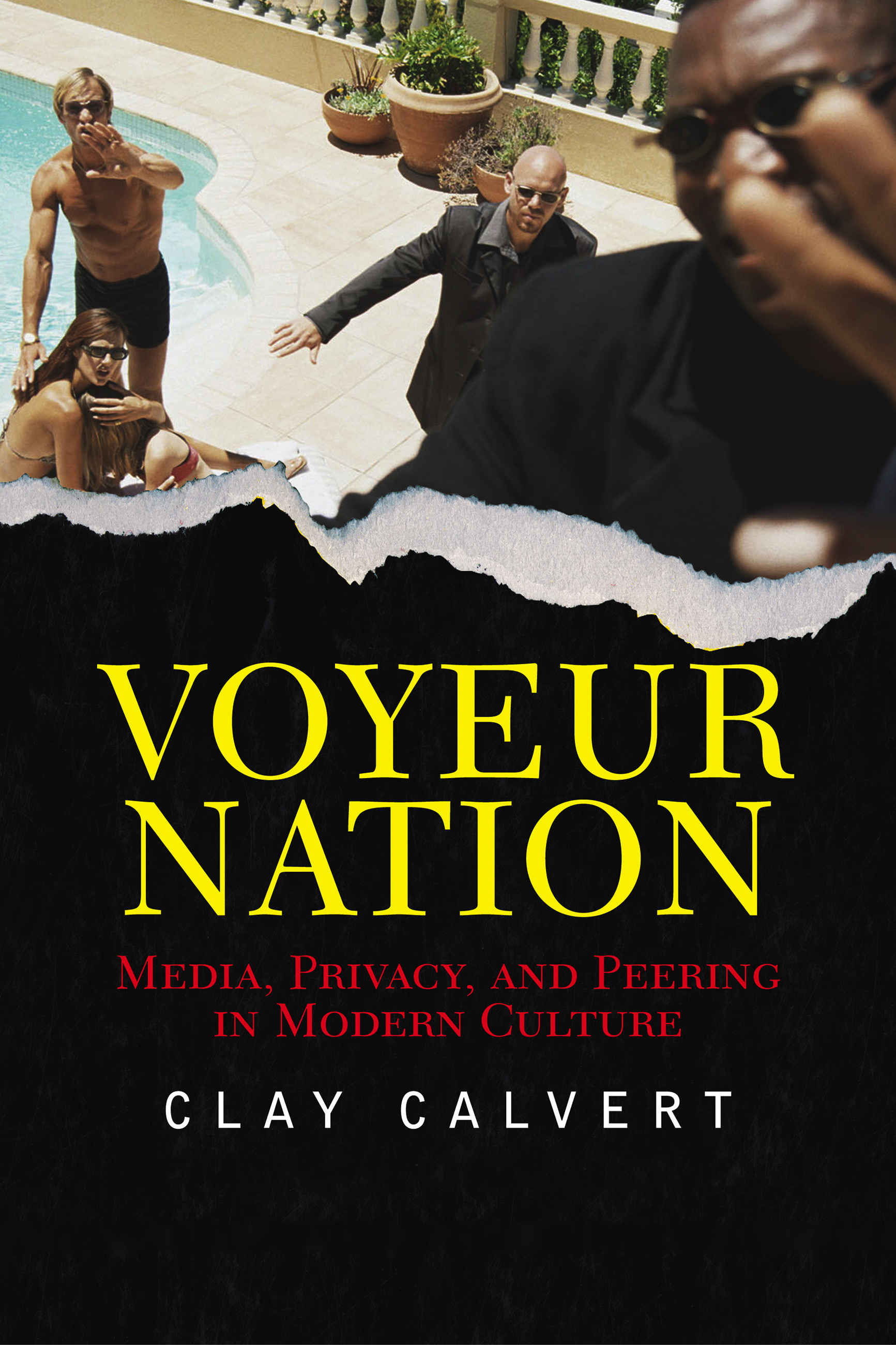 Voyeur nation media privacy and peering in modern culture 4