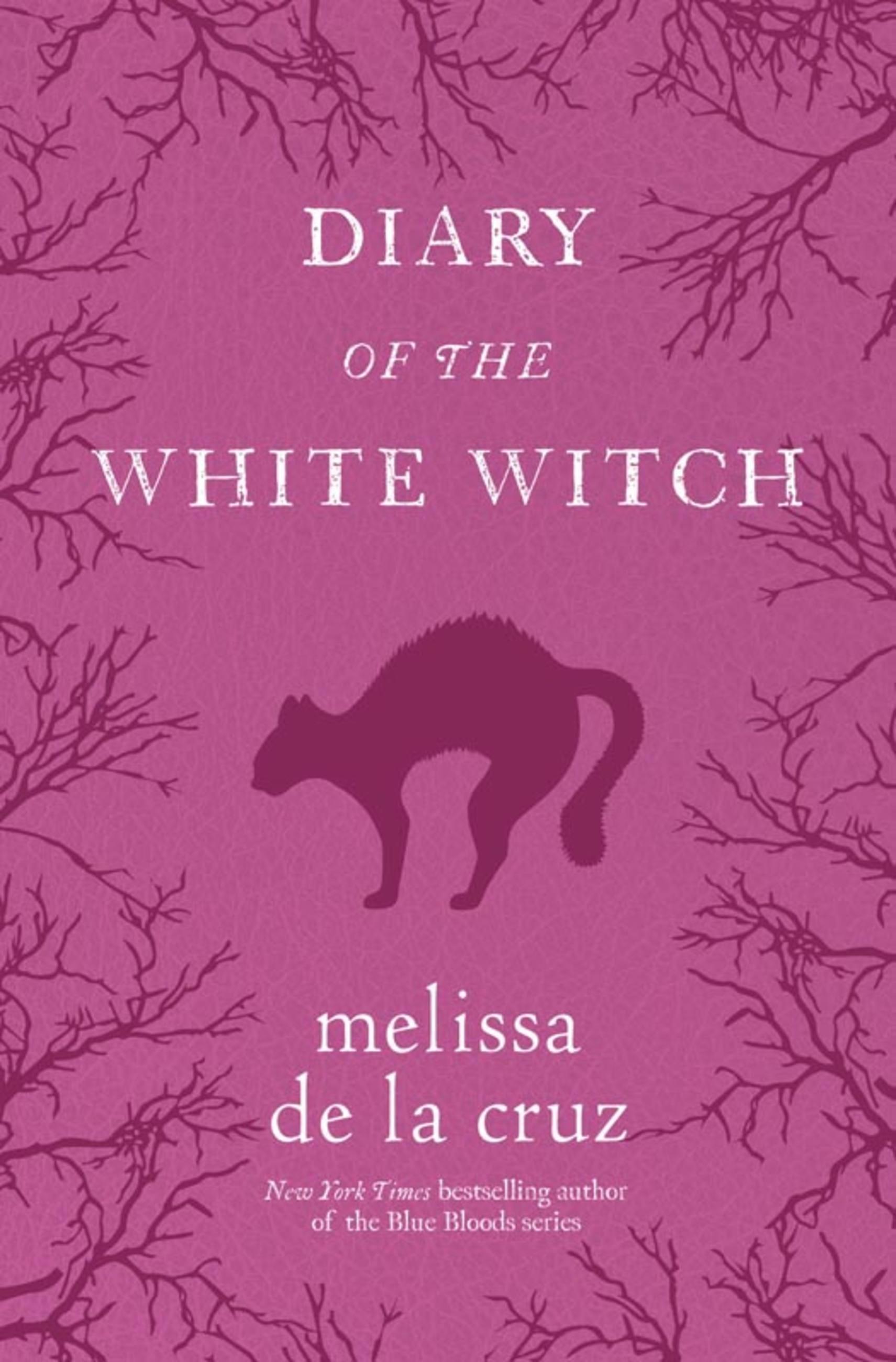 Diary Of The White Witch By Melissa De La Cruz Hachette Book Group