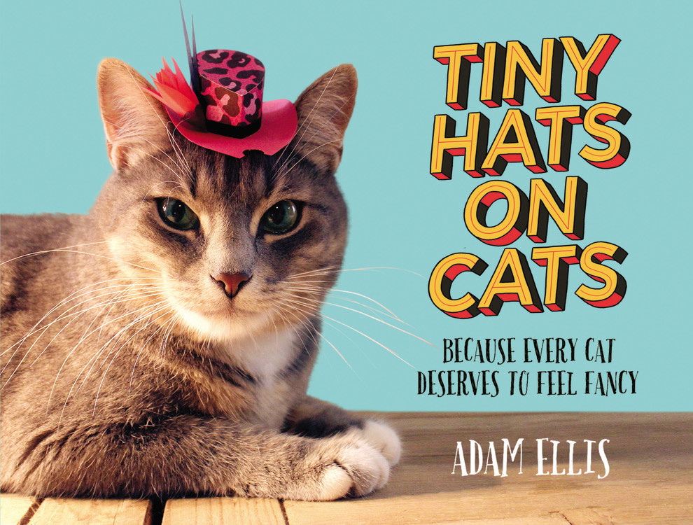 Tiny Hats On Cats Adam Ellis