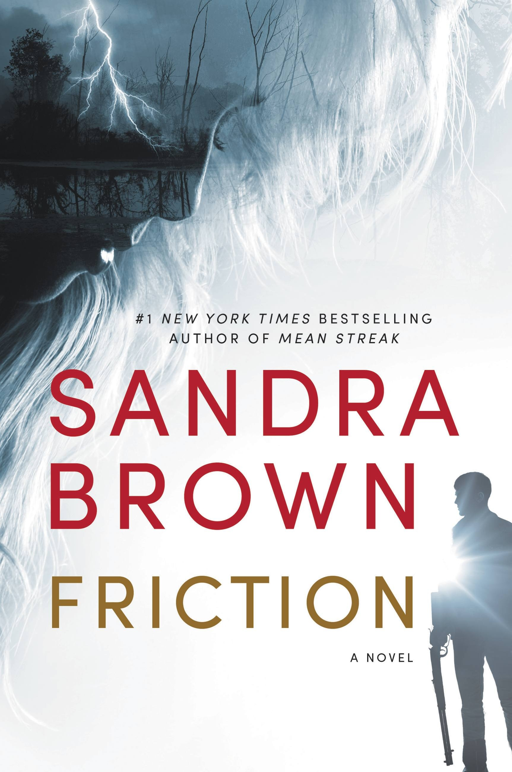 FrictionbySandraBrown