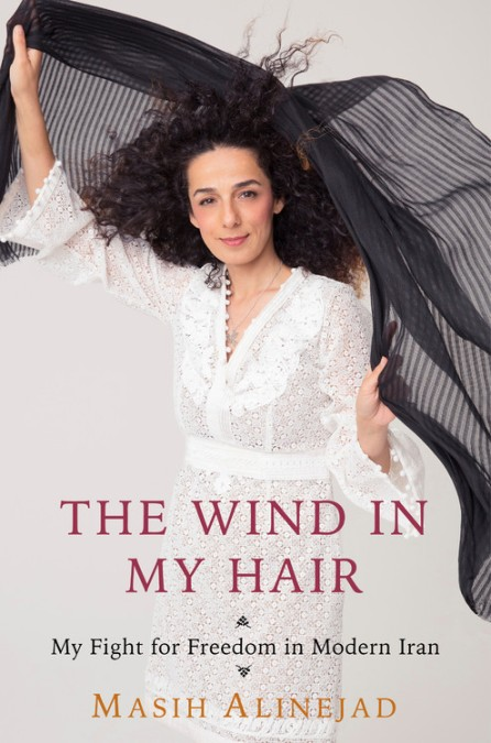 The Wind in My Hair book cover