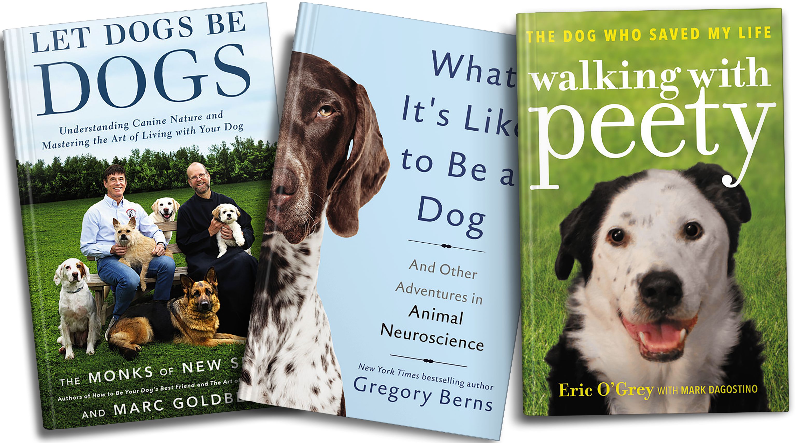 In Post Image for 10 Gifts for the Dog Lover in Your Life