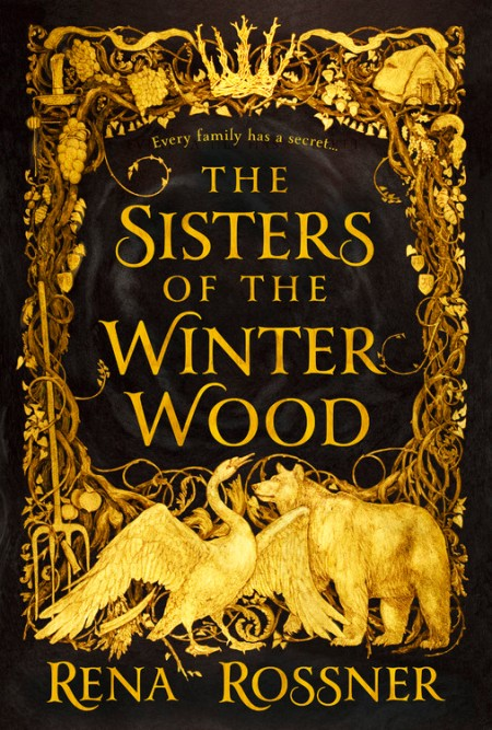 Image result for The Sisters of the Winter Wood by Rena Rossner