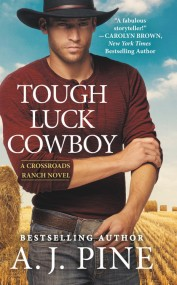 The Cowboy Next Door by R C  Ryan | Hachette Book Group