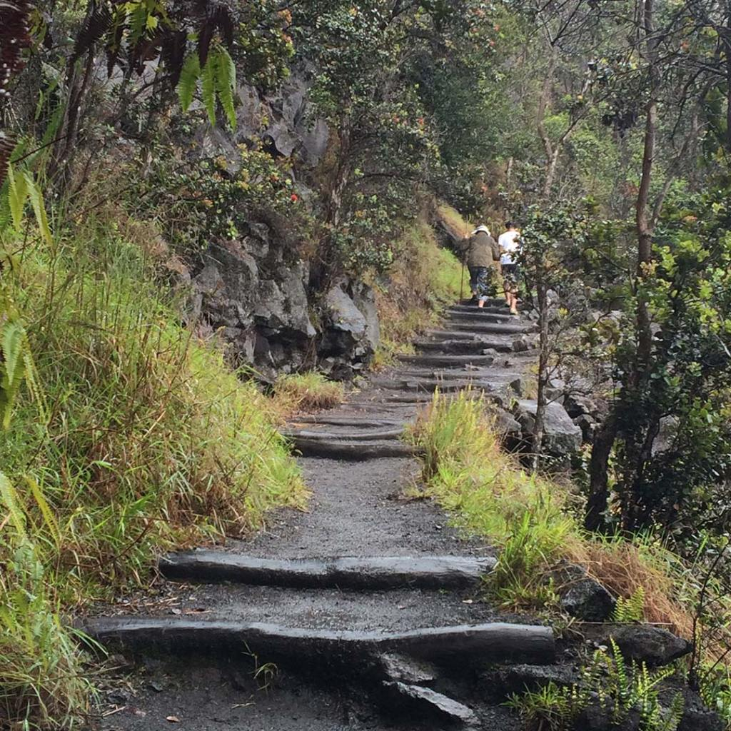 stairs on a hiking trail