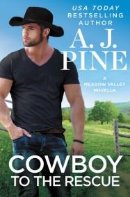The Cowboy Next Door by R C  Ryan   Hachette Book Group