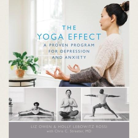 The Yoga Effect By Liz Owen Hachette Book Group