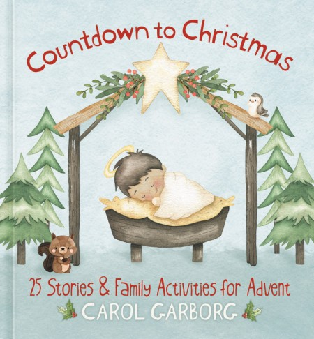 Countdown To Christmas Activity Book 2020 Countdown to Christmas by Carol Garb  Hachette Book Group